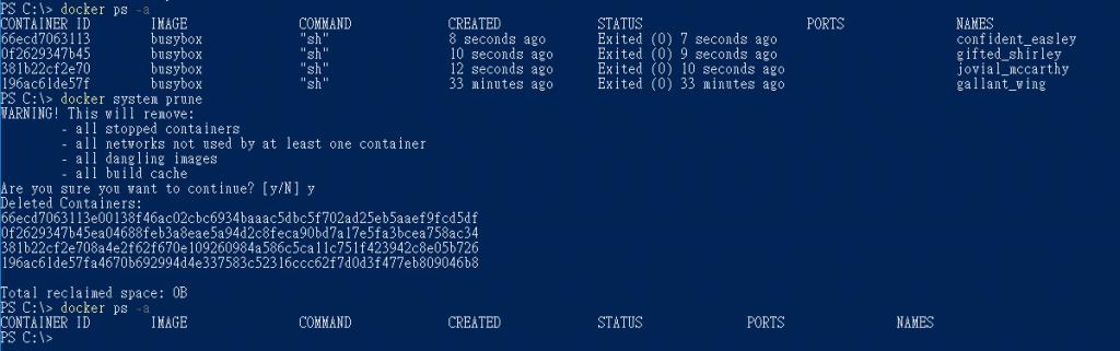 cmd_system_prune