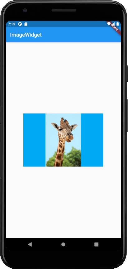 image-widget-contain