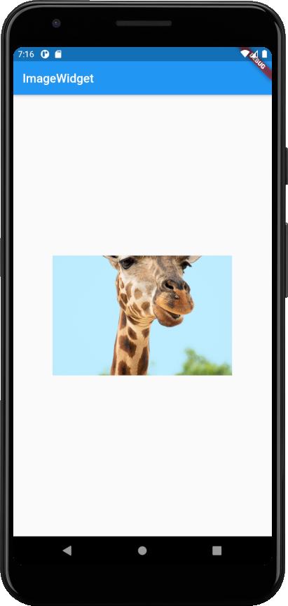 image-widget-fitwidth