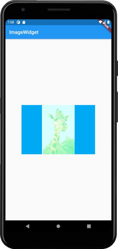 image-widget-screen