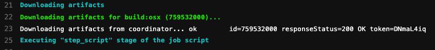 插入 test:osx 工作畫面